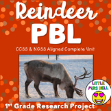 Reindeer PBL & Research Project