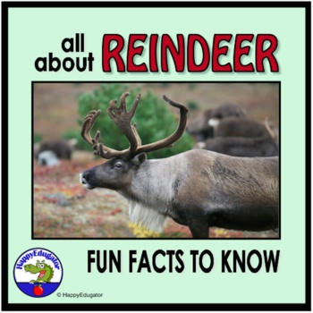 Reindeer PowerPoint - Fun Facts All About Reindeer