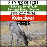 Reindeer Informational Text FREE