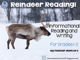 Reindeer Nonfiction Informational Reading Literacy Unit