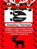 Reindeer Non-fiction Text includes writing, graphic organizers and comprehension