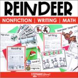 Reindeer (Reindeer Nonfiction)