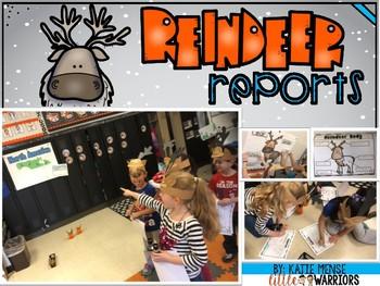 Reindeer Reports