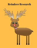 Reindeer - Research Fun!