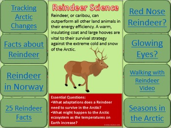 Reindeer Science Interactive Task Cards