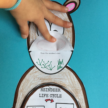 Reindeer Craft: Science,Language Arts,Editable Writing Prompts