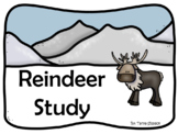 Reindeer Study