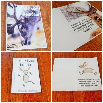 Reindeer Thematic Unit & Craft