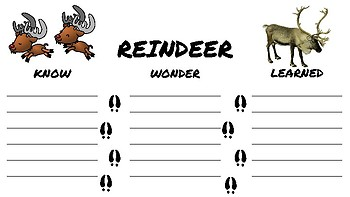 All About Reindeer Unit Printables