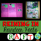 Reindeer, Winter, Christmas, Informative, Explanatory, Exp