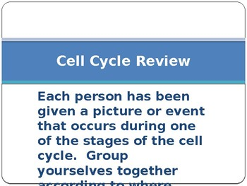 Relationship between the cell cycle, mutation, and cancer.