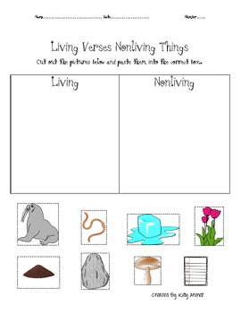 Relationships Among Living Things Unit