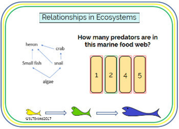 Relationships in Ecosystems Boom Cards