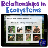 Relationships in Ecosystems Vocabulary BOOM Cards