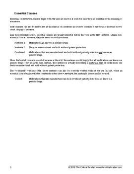 Relative Pronouns: Lesson + 2 Worksheets
