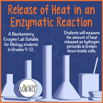 Enzyme Lab:  Release of Heat in an Enzymatic Reaction