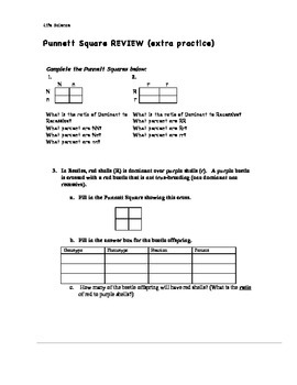 Remedial Extra Practice Punnett Square - Life Science 7th grade