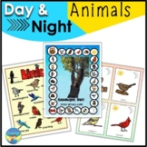 Nocturnal Animals for Kindergarten   Book Companion   Good