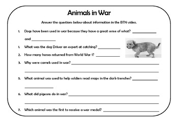 Remembrance Day Australia - Animals in War - History and English Activities
