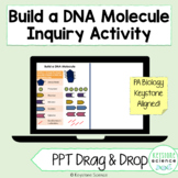 Remote Learning Build DNA Model POWERPOINT Drag and Drop
