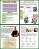 Renaissance Art and Literature Complete 1 Day Lesson Plan