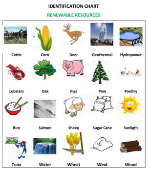 Renewable and Non-Renewable Resources Sort Game -- Volume 2