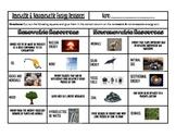 Renewable and Nonrenewable Energy Resources Sort