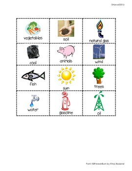 Renewable and Nonrenewable Resources Sort