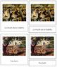 Renoir (Pierre-Auguste) 3-Part Art Cards