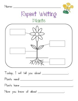 Plants Report Writing
