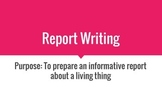 Report Writing (Students)