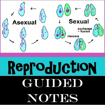 Reproduction(Asexual and Sexual)