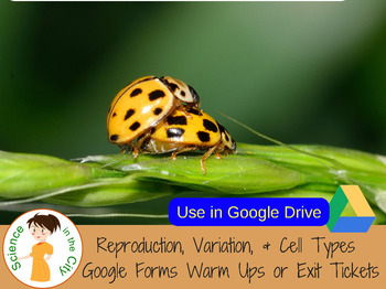 Reproduction, Cell Types, & Variation Google Form Exit Ticket/Warm Up Assessment