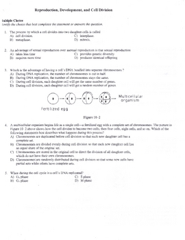 Reproduction, Development and Cell Division Test HS Biology