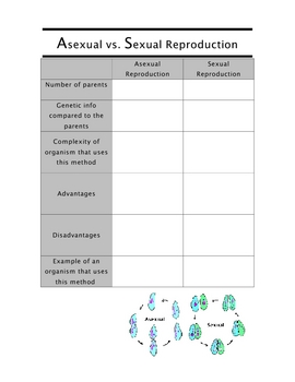 Reproduction SCIENCE - Comparing asexual and sexual reproduction chart