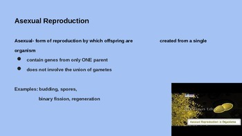 Reproduction and Genetic Diversity PPT