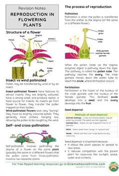 Reproduction in Flowering Plants - Handout and practice questions