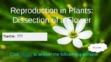 Reproduction in Plants  Webquest