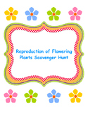 Reproduction of Flowering Plants Scavenger Hunt