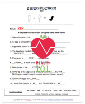 Reproductive Anatomy Matching Worksheet / Quiz- *Conception, Reproduction