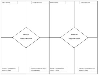 Reproductive Strategies Graphic Organizer - Asexual and Sexual Reproduction