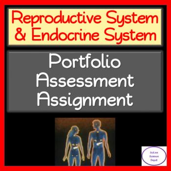 Reproductive System & Endocrine System: Portfolio Assessment Assignment