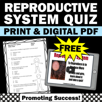 FREE Reproductive System Activity, Human Body Systems Grade 5 Worksheet