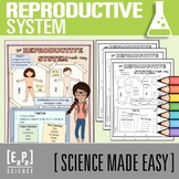 Reproductive System Made Easy- Student Notes and Powerpoint