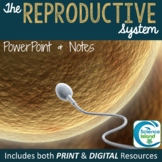 Reproductive System PowerPoint and Notes (Distance Learning)