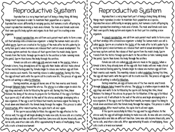 Reproductive System Reading Comprehension Interactive Notebook
