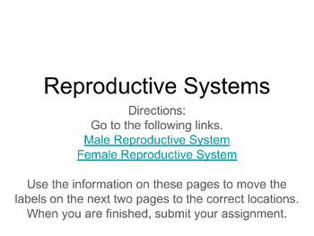Reproductive Systems Research and Labeling Digital Sort Resource