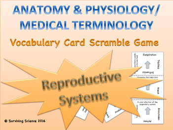 Reproductive Systems Vocabulary Scramble Game: Anatomy & M