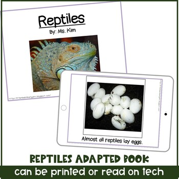 Reptile Adapted / Interactive Book for Special Education