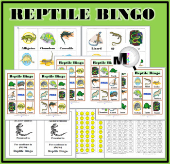 Reptile Bingo Game  - Animal Classification